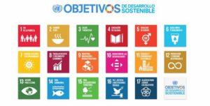 Curso de formación básica en Objetivos de Desarrollo Sostenible (on line)
