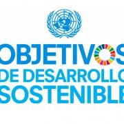 """""""Objetivos de Desarrollo Sostenible (ODS) en la agenda de las empresas españolas"""" - Temas medioambientales (presencial u on line) @ Presencial u on line"""